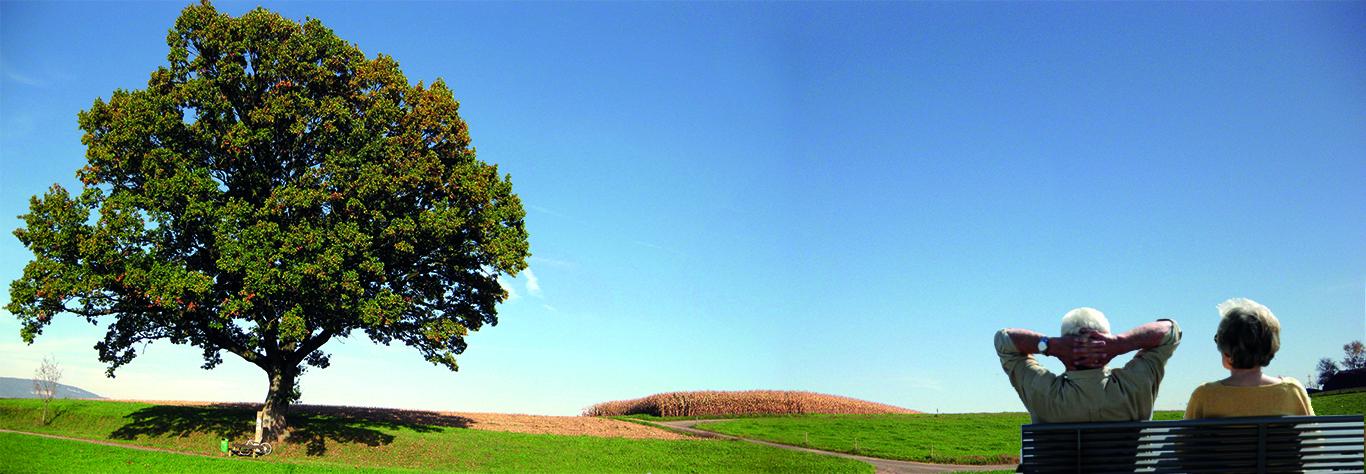 Baum rentner