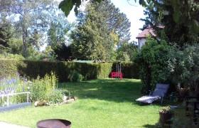 Fotos neu vom Garten 048